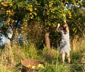Du und dein Garten im naturpark (Foto: BIZ Storkow)