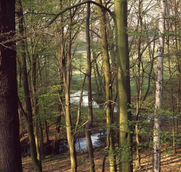 npdh  dahmetal sonnenberg 620x591 20.000 Jahre Landschaftsgeschichte zwischen Oderin und Briesen