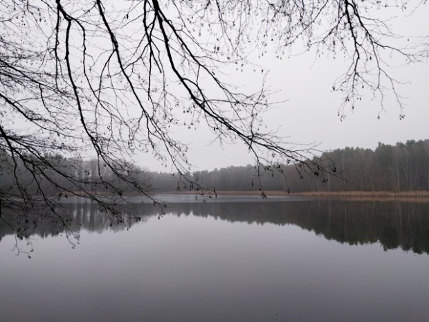 npdh tütschensee sonnenberg2016 620x465 Winterliche Rundwanderung um den Tütschensee