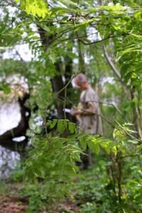schreiben am springsee 02 200x300 Waldwispern – wenn Bäume sprechen