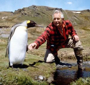 Hein Sielmann mit Pinguin (Foto: Sielmannstiftung)