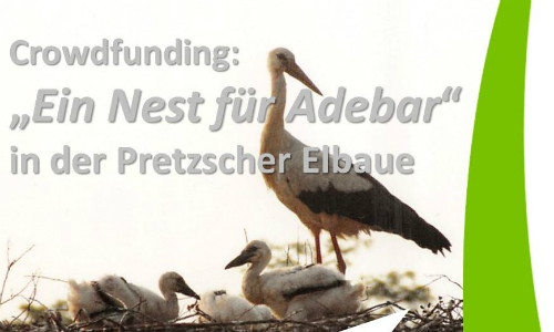 2018 07 11 19 36 56 500 Ein sicheres Nest für Adebar