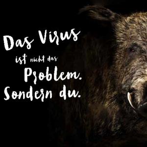 Postkarte Afrikanische Schweinepest (C) Sächsisches Staatsministerium für Soziales und Verbraucherschutz