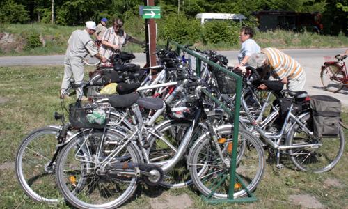 2403 Aktionstag: Mit dem Fahrrad durch die Dübener Heide