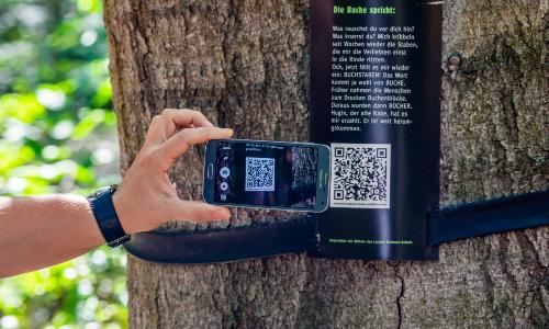 Baumtheater QR Code Naturparkplan 2030: Wie künftig in der Dübener Heide kommuniziert und informiert werden soll