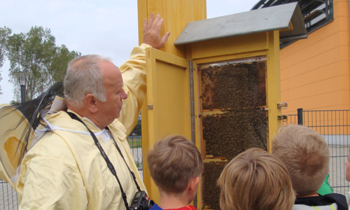 BeePass Für mehr Artenvielfalt: Mockrehnaer Schüler bekommen Bienenschaubeute