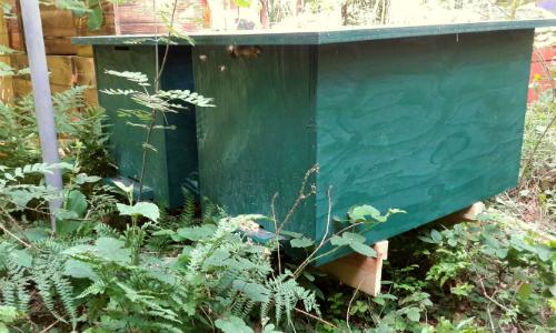 Bienenkasten500 Workshop zum Bienenkasten Bau