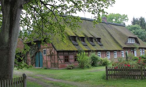 Essel 2013 045 Neue Ausstellung im Naturparkhaus: Die Lüneburger – und die Dübener Heide