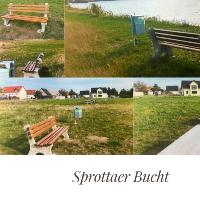 Die Sprottaer Bucht nach der Neugestaltung (C) Sprottaer Heimatverein e.V.