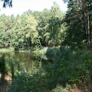 Friedrichsee (C) VDH