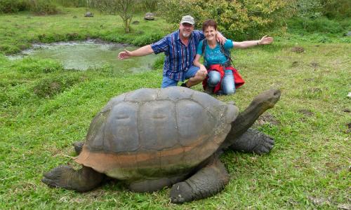 Galapagos Schildkröte auf Santa Cruz 500 Haus am See: Vortrag über die Galapagosinseln und Ecuador