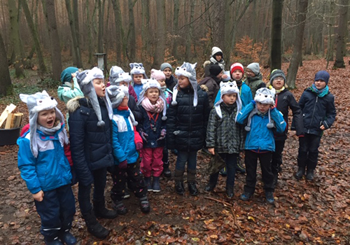 Kleine Wölfe im Heidewald 500 300 Schüler des evangelischen Schulzentrums auf Spurensuche im Winterwald