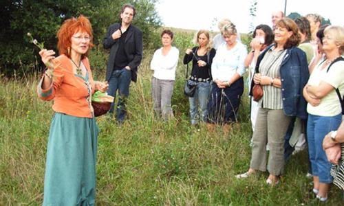 Kräuter1 Unterwegs mit der Kräuterfrau der Dübener Heide