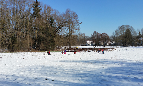 Naturpark Entdeckertage 500 300 Winterhighlights im Naturpark Dübener Heide: Schüler reisen in die Welt der Tiere des Waldes