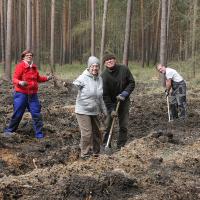 Pflanzaktion im Heidewald (C) Axel Mitzka