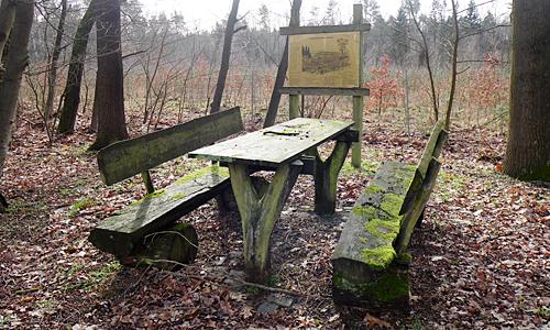 Runde ab Pretzschau 088 gr Wildtiersonntag: Auf den Spuren des Frühlings