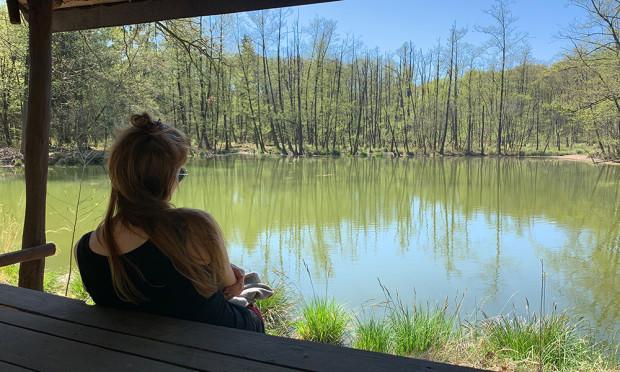 Sommersonnenwende im Wald Nico Fliegner 500 300 620x372 Waldbaden zur Sommersonnenwende