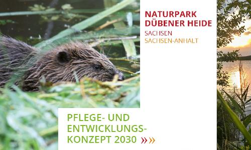 Titelbild PEK DH beide Landesteile 500 Naturpark Dübener Heide stellt sich für die Zukunft auf    neues Pflege  und Entwicklungskonzept erarbeitet