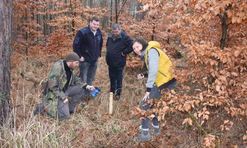 Vorbereitung Lockstock Wildkatze 500 Auf leisen Pfoten zwischen Muldestausee und Ochsenkopf