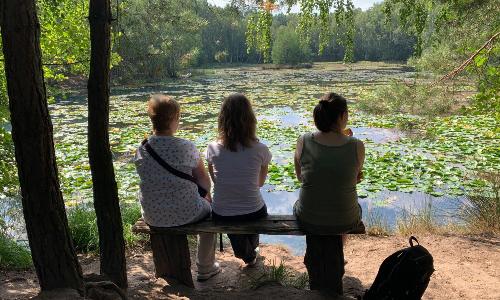 Waldbaden 500 Waldbaden im Juni