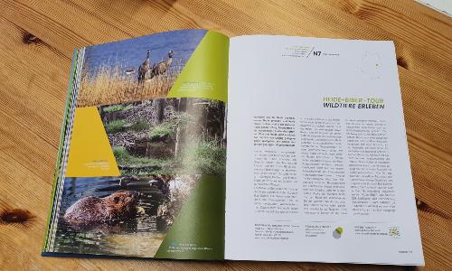 Wanderbares Deutschland Foto VDH 500 Wir sind dabei: Heide Biber Tour im Bildband Wanderbares Deutschland