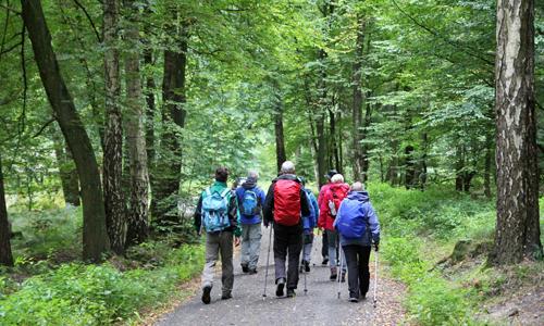 Wandern6 Veranstaltungen in der Naturparkregion am Oktober Heidesonntag