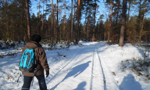 Wanderung 001 1 Wildtiersonntag im Monat März