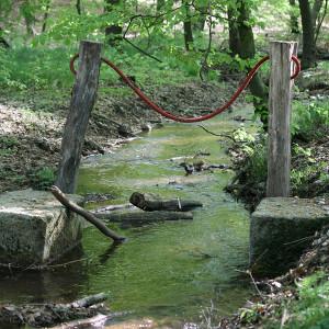 Wassertretstelle im Hammerbach (C) VDH/Janine Meißner
