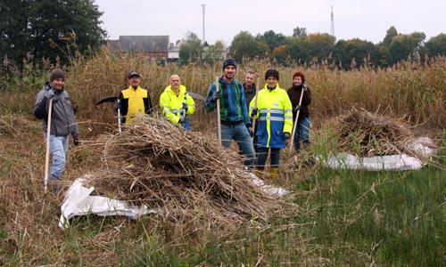 enviaM Fledermausschutz: enviaM unterstützt den Naturpark Dübener Heide mit 2500 Euro