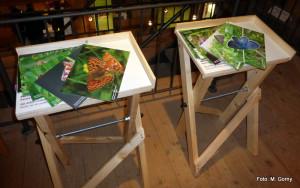 2-Schmetterlingsausstellung eröffnung Grassemann 14-9-14_Go (3)