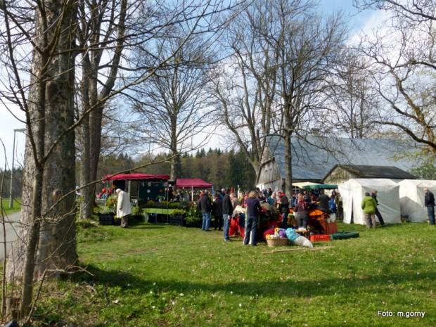 4 Ostermarkt Grassemann 2014 04 13 Go 4 620x465 Palmsonntag, 09.04., 11 17 Uhr: Ostermarkt