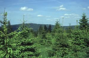 6 Meier Blick vom Ochsenkopf zum Schneeberg