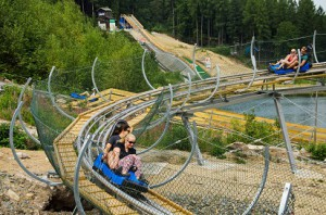 Alpine-Coaster