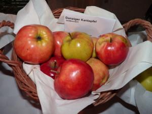 Apfel Danziger Kantapfel_ESchörner (221)