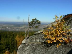Burgst Luisenb froheu 10-2012 (11)
