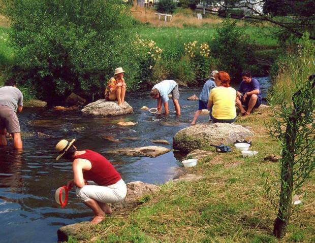 Egerexkursion 2004 620x479 Löwenzahn und Rattenschwanz – Naturpädagogische Fortbildung