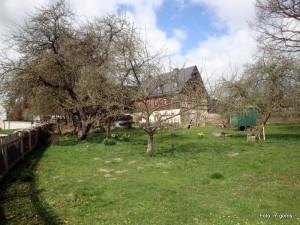 Garten Streuobst Tiere-Bödlas_2014 Go  (3)