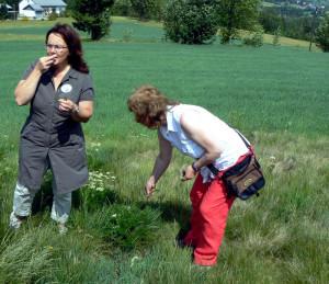 Herberia Bärwurzkräuterwamderung  Nagel froheu 2011