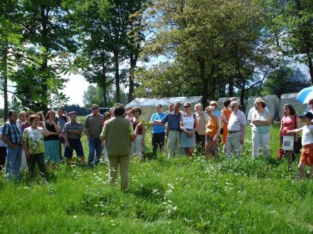 Kräutertag Grassemann1 620x465 Fr, 21.07., 15 Uhr: Wildkräuterwanderung mit Kräuterbrotzeit