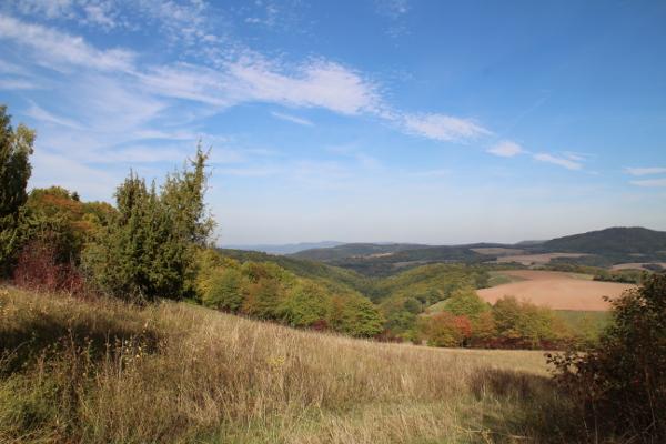 Ausblick im Sontraer Land richtung Sontra Weissenborn c Hans Joachim Laun Blühende Bergwiesen und Fernblicke zum Sattsehen bei Sontra