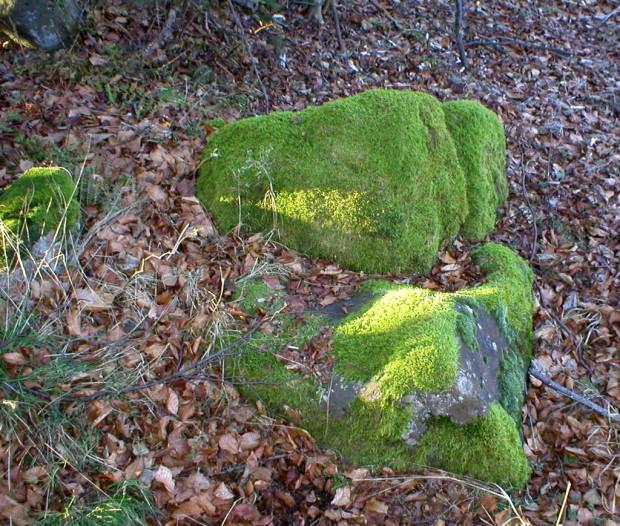 Frau Holle Stuhl c Geo Naturpark Frau Holle Land 620x526 Morgengabe und Hollsteine
