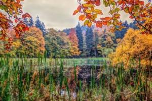 Frau-Holle-Teich in Herbstfarben(c)Peter Kerst