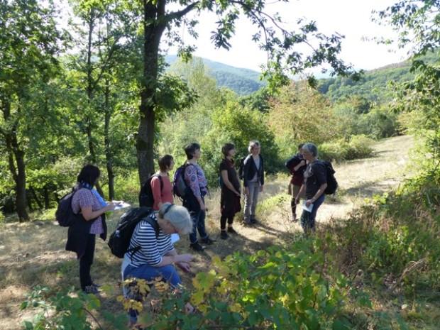 Gruppe c Rahel Dehlinger 620x465 EinDruck Landschaft   kreativer Sonntagsspaziergang