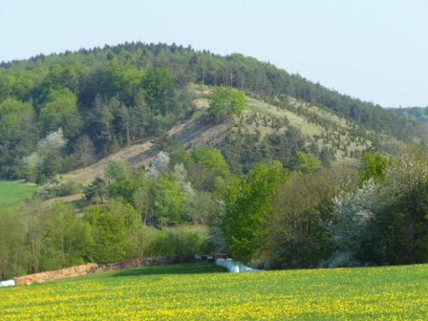 K640 Kindelberg april2011 laun 620x465 Geschichte und Natur in Reichenbach