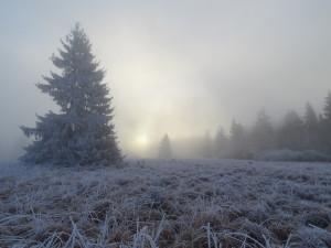 Mystische Winterstimmung auf dem Hohen Meißner (c) Peter Kerst