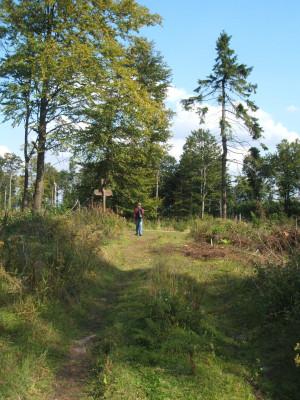 Nähe Kasseler Kuppe (c) Geo-Naturpark Frau-Holle-Land