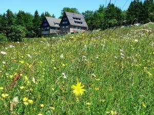 Hausener Hute mit Naturfreundehaus (c) Geo-Naturpark Frau-Holle-Land