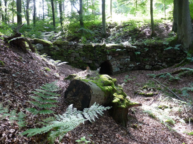 P1140968 Schuster Franz Brücke klein 620x465 Panoramaweg Helsa Wickenrode