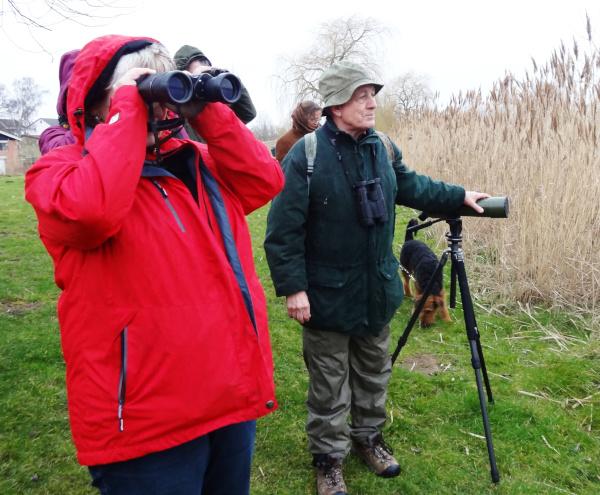 Vögel beobachten mit Bernd Hiddemann cHanna Wallbraun Ehrenamtliche Wasservogelfreunde gesucht