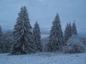 Winterlandschaft(C)Dieter Schmuch